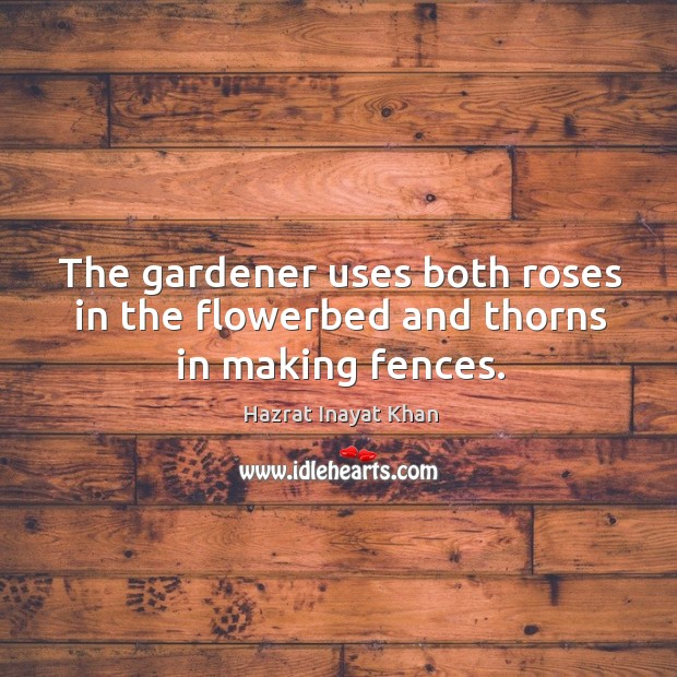 The gardener uses both roses in the flowerbed and thorns in making fences. Image