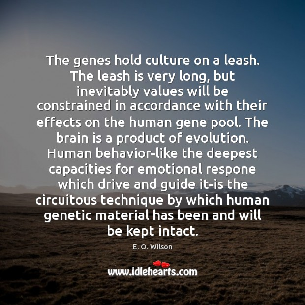 Image, The genes hold culture on a leash. The leash is very long,