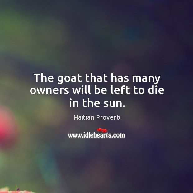 The goat that has many owners will be left to die in the sun. Haitian Proverbs Image