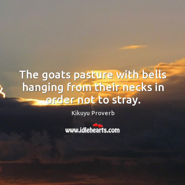 The goats pasture with bells hanging from their necks in order not to stray. Image
