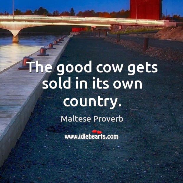 Image, The good cow gets sold in its own country.