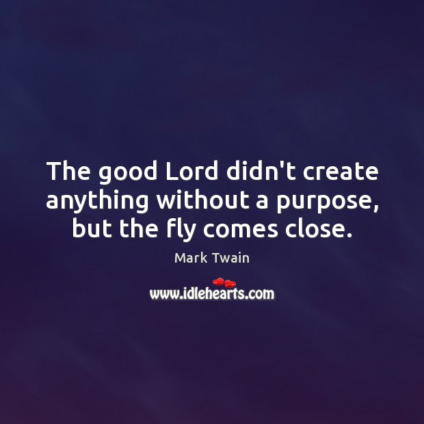 The good Lord didn't create anything without a purpose, but the fly comes close. Mark Twain Picture Quote
