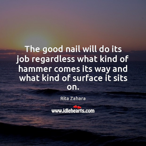 The good nail will do its job regardless what kind of hammer Rita Zahara Picture Quote