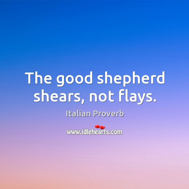 Image, The good shepherd shears, not flays.