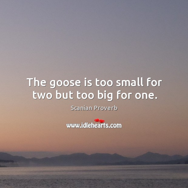 The goose is too small for two but too big for one. Scanian Proverbs Image