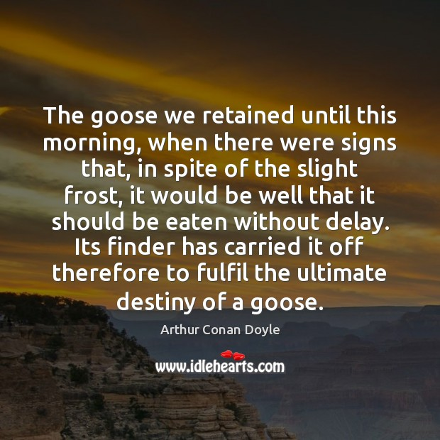 Image, The goose we retained until this morning, when there were signs that,