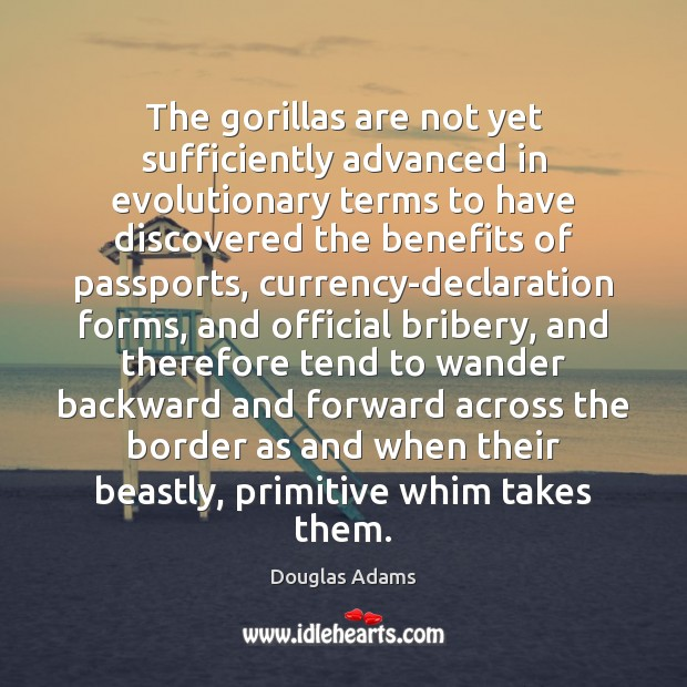 Image, The gorillas are not yet sufficiently advanced in evolutionary terms to have