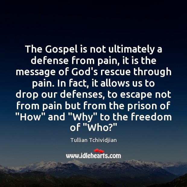 The Gospel is not ultimately a defense from pain, it is the Image
