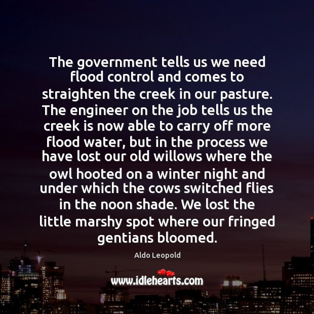 The government tells us we need flood control and comes to straighten Image