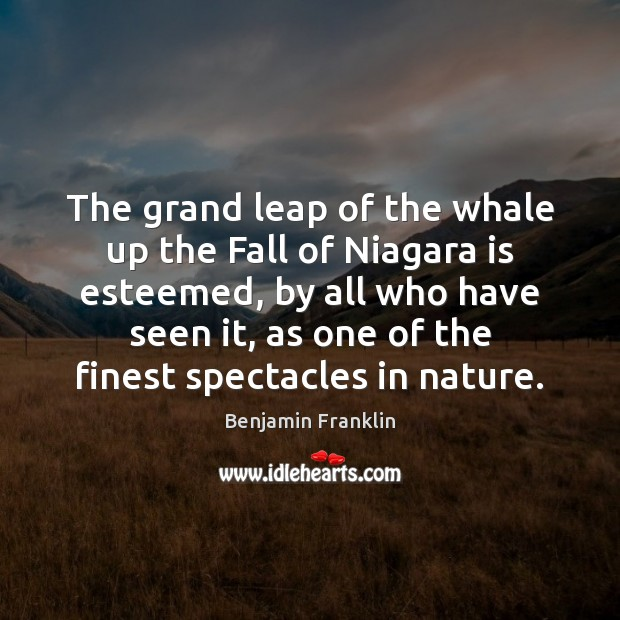 The grand leap of the whale up the Fall of Niagara is Image