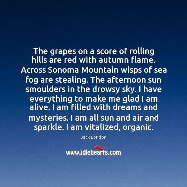 The grapes on a score of rolling hills are red with autumn Jack London Picture Quote