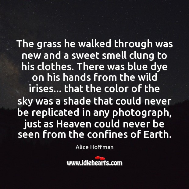 The grass he walked through was new and a sweet smell clung Alice Hoffman Picture Quote