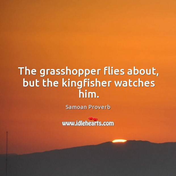 The grasshopper flies about, but the kingfisher watches him. Samoan Proverbs Image