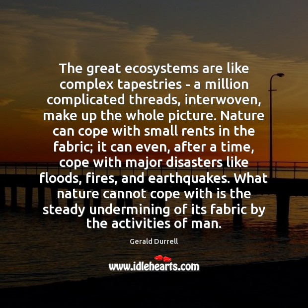 The great ecosystems are like complex tapestries – a million complicated threads, Image
