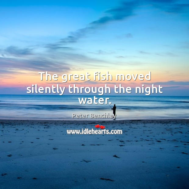 The great fish moved silently through the night water. Image