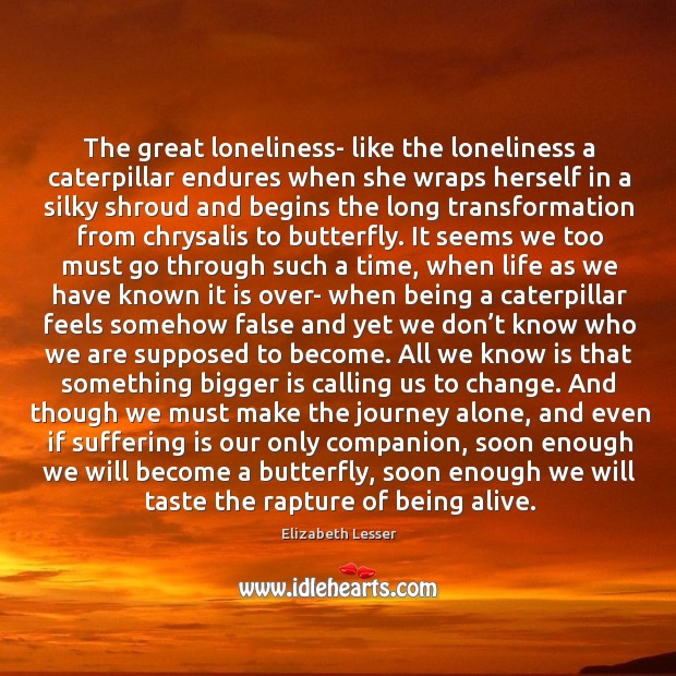 The great loneliness- like the loneliness a caterpillar endures when she wraps Image