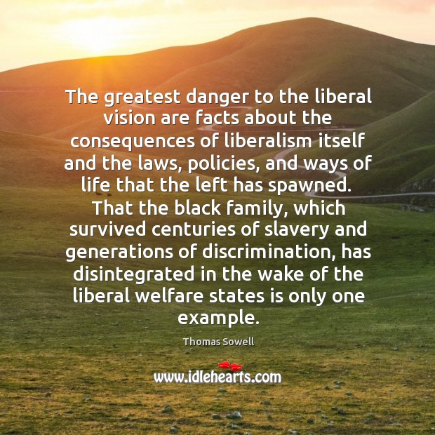 Image, The greatest danger to the liberal vision are facts about the consequences