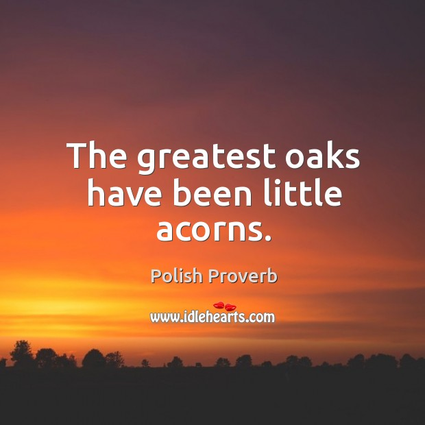 The greatest oaks have been little acorns. Polish Proverbs Image