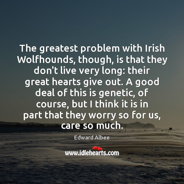 The greatest problem with Irish Wolfhounds, though, is that they don't live Edward Albee Picture Quote