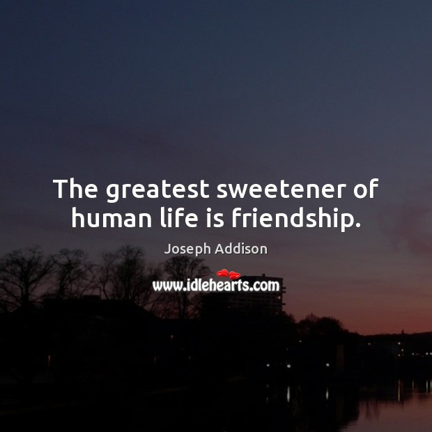 Image, The greatest sweetener of human life is friendship.