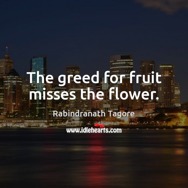 The greed for fruit misses the flower. Rabindranath Tagore Picture Quote