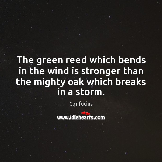 Image, The green reed which bends in the wind is stronger than the
