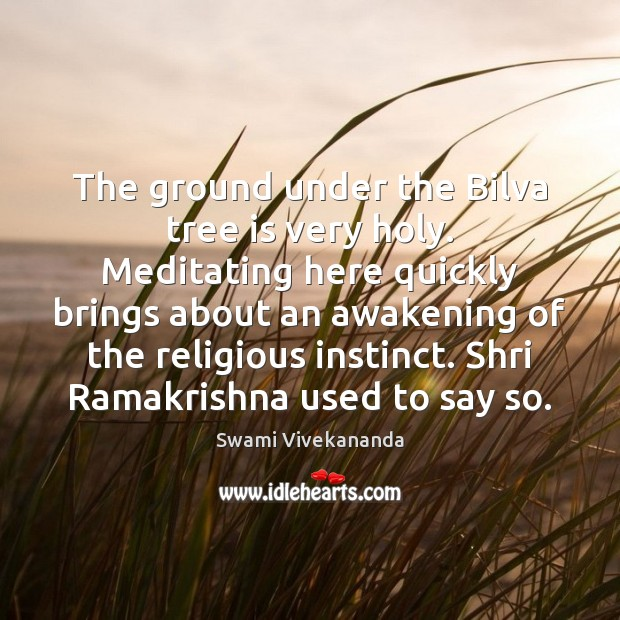 The ground under the Bilva tree is very holy. Meditating here quickly Awakening Quotes Image