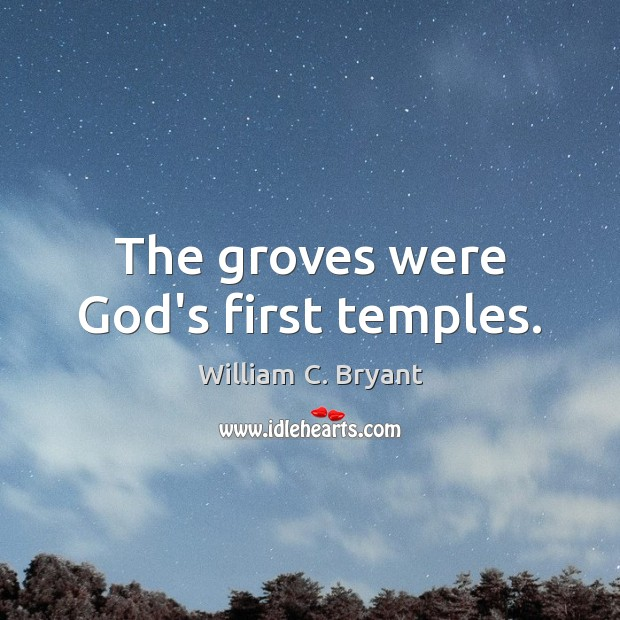 The groves were God's first temples. Image