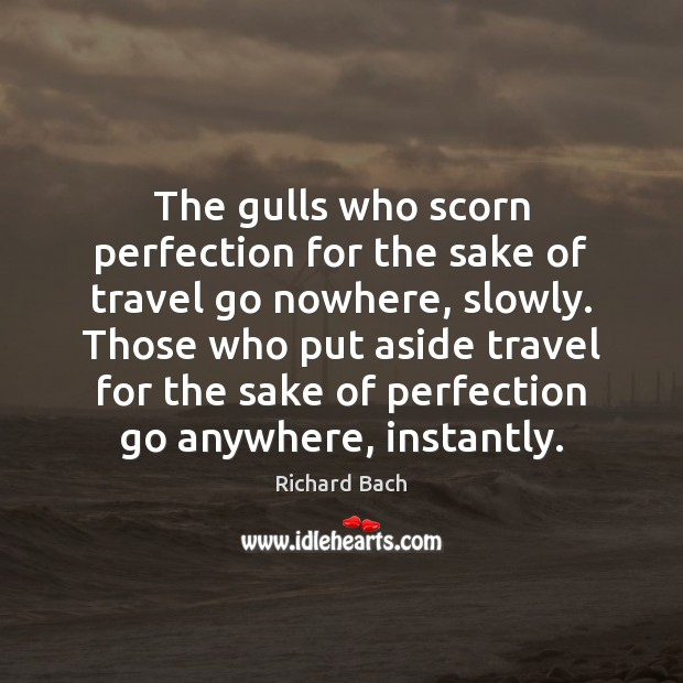 The gulls who scorn perfection for the sake of travel go nowhere, Richard Bach Picture Quote