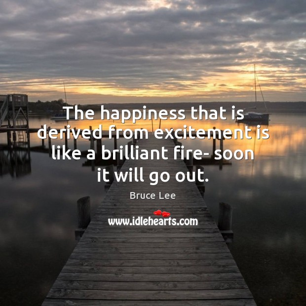 The happiness that is derived from excitement is like a brilliant fire- Image