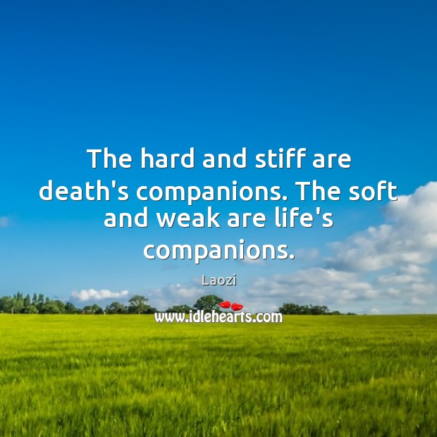 Image, The hard and stiff are death's companions. The soft and weak are life's companions.