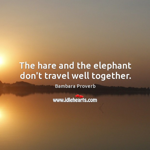 The hare and the elephant don't travel well together. Bambara Proverbs Image