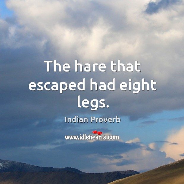 The hare that escaped had eight legs. Indian Proverbs Image