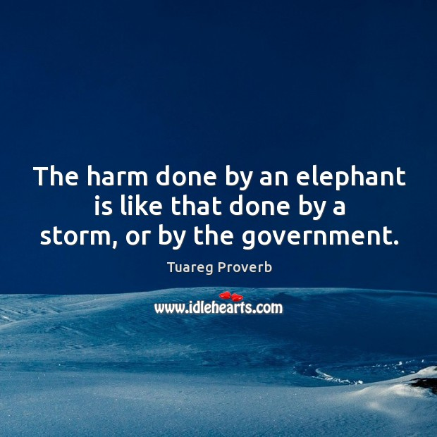 The harm done by an elephant is like that done by a storm, or by the government. Tuareg Proverbs Image