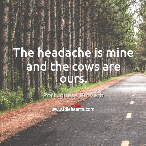 The headache is mine and the cows are ours. Image