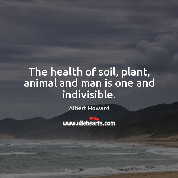Image, The health of soil, plant, animal and man is one and indivisible.