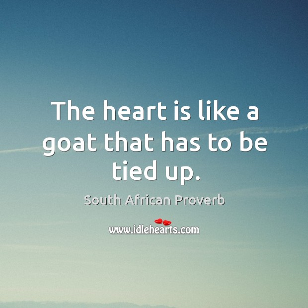 The heart is like a goat that has to be tied up. South African Proverbs Image