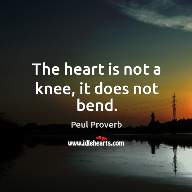 Image, The heart is not a knee, it does not bend.