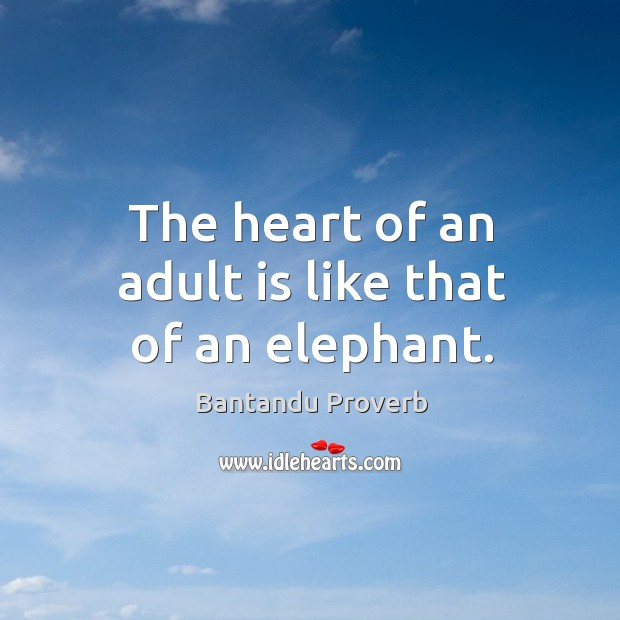 The heart of an adult is like that of an elephant. Bantandu Proverbs Image