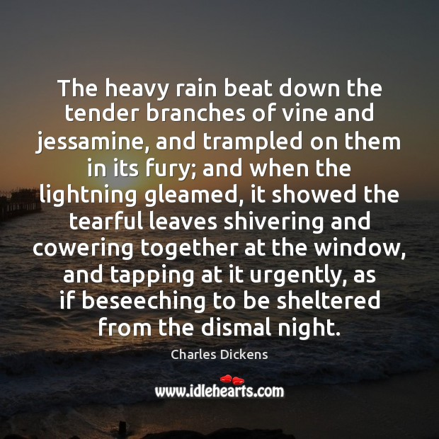 Image, The heavy rain beat down the tender branches of vine and jessamine,