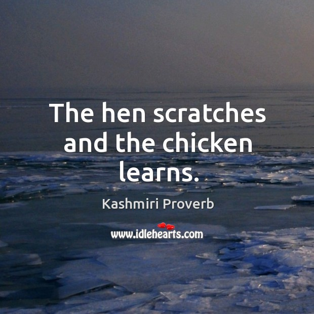 The hen scratches and the chicken learns. Kashmiri Proverbs Image