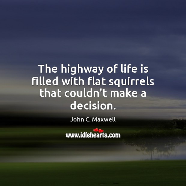 Image, The highway of life is filled with flat squirrels that couldn't make a decision.