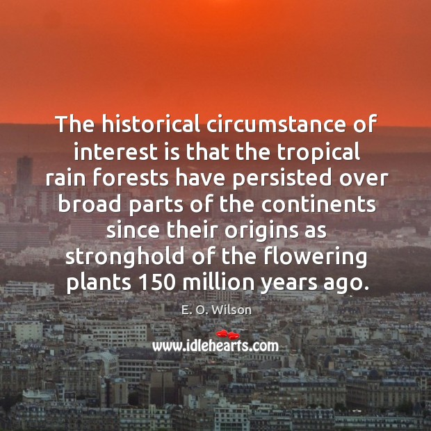 Image, The historical circumstance of interest is that the tropical rain forests have persisted