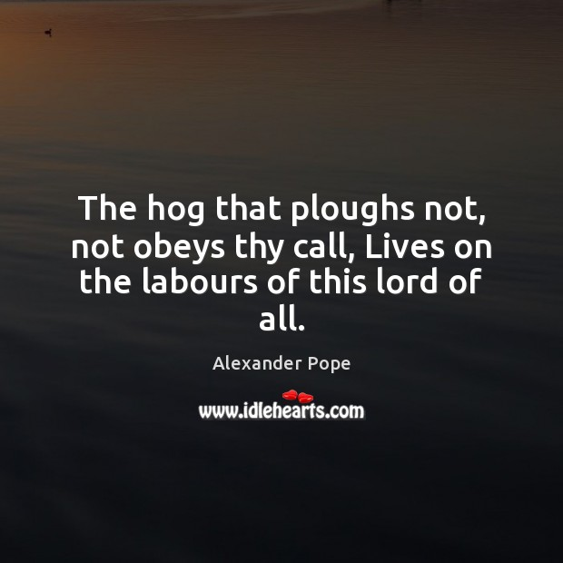 The hog that ploughs not, not obeys thy call, Lives on the labours of this lord of all. Image