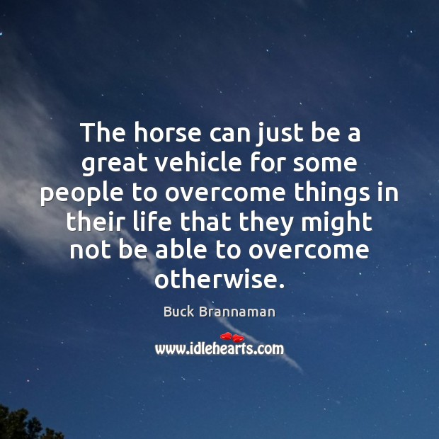 The horse can just be a great vehicle for some people to Image