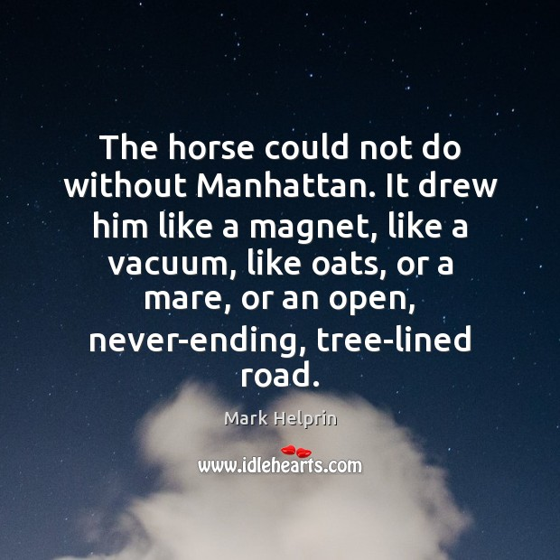 The horse could not do without Manhattan. It drew him like a Image