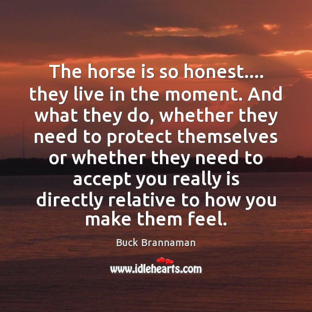 The horse is so honest…. they live in the moment. And what Image