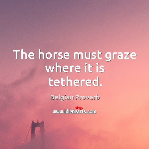 The horse must graze where it is tethered. Belgian Proverbs Image