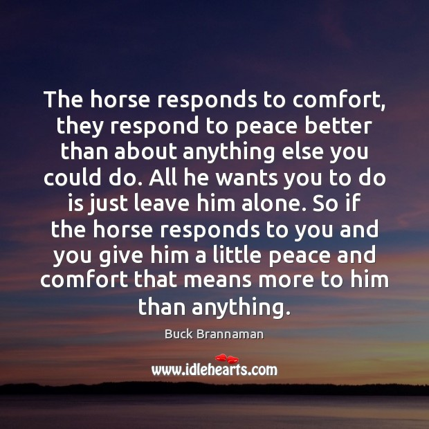 Image, The horse responds to comfort, they respond to peace better than about