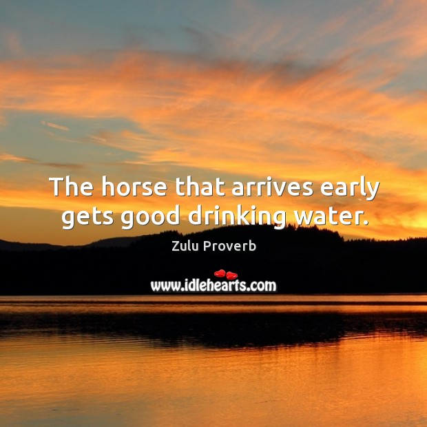 The horse that arrives early gets good drinking water. Zulu Proverbs Image